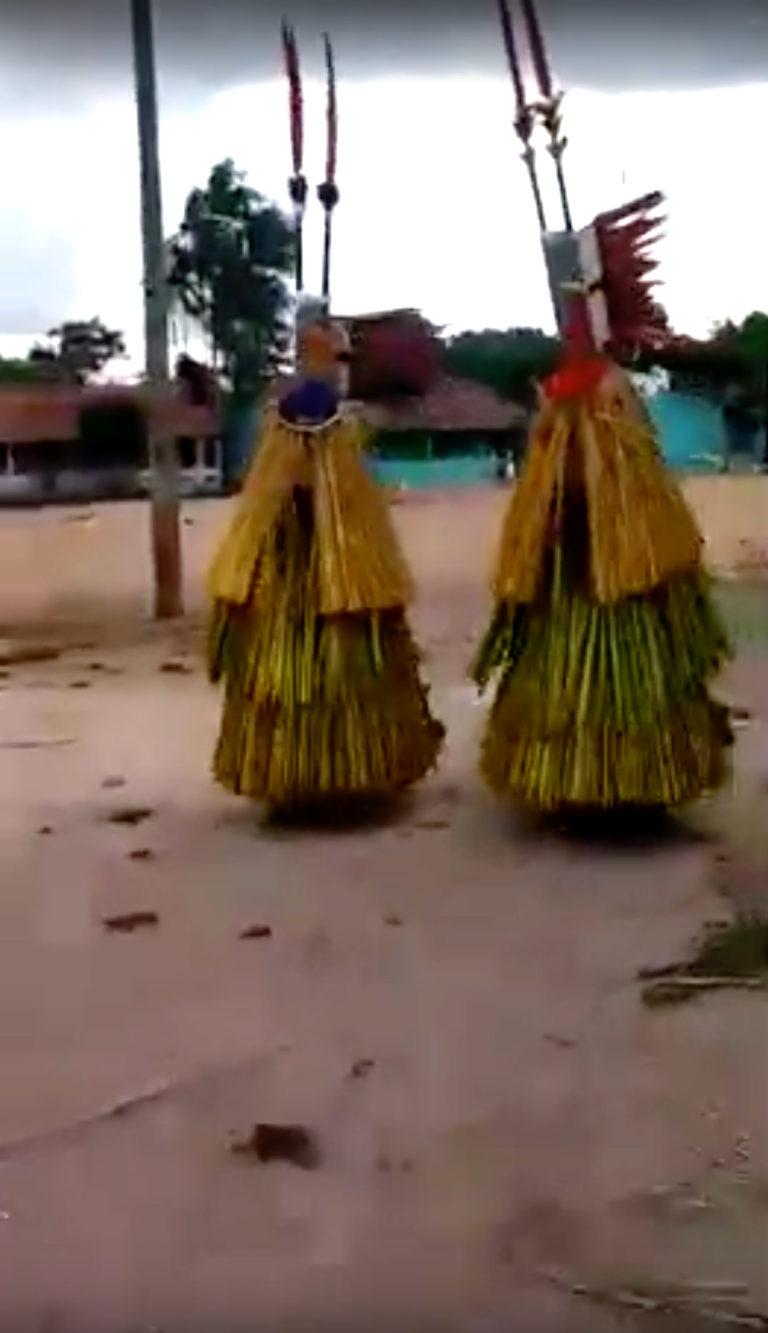 aldeia / ritual / Xikrin / aruana / Bô